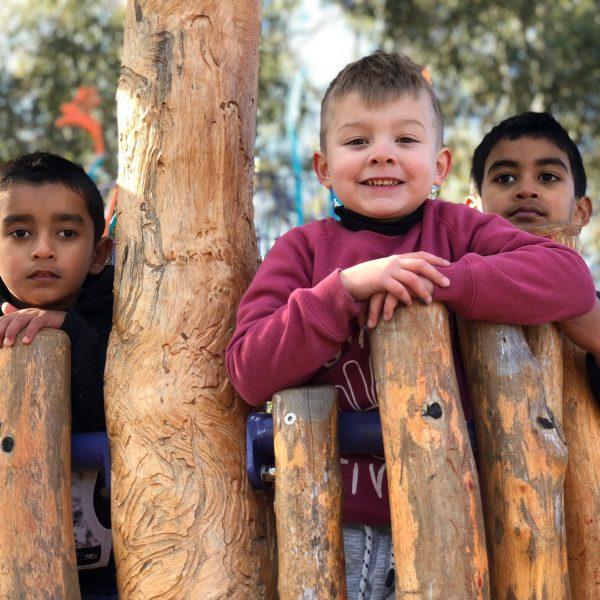 3 preschool boys in tree cubby house